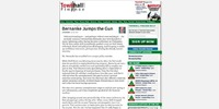 Article Page
